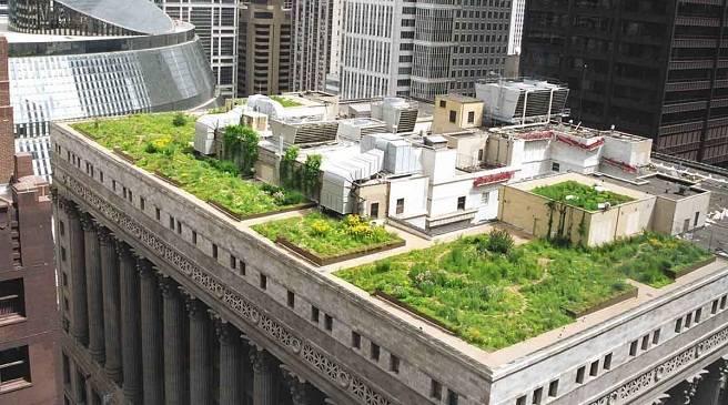 Tejados-verdes-las-ventajas-de-tener-un-jardin-en-el-tejado1